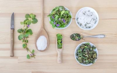 Kosmetik aus Pflanzen selbst herstellen und Aromatherapie Vertiefung